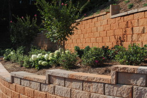 We offer many landscape design and installation options for both residential and commercial properties.