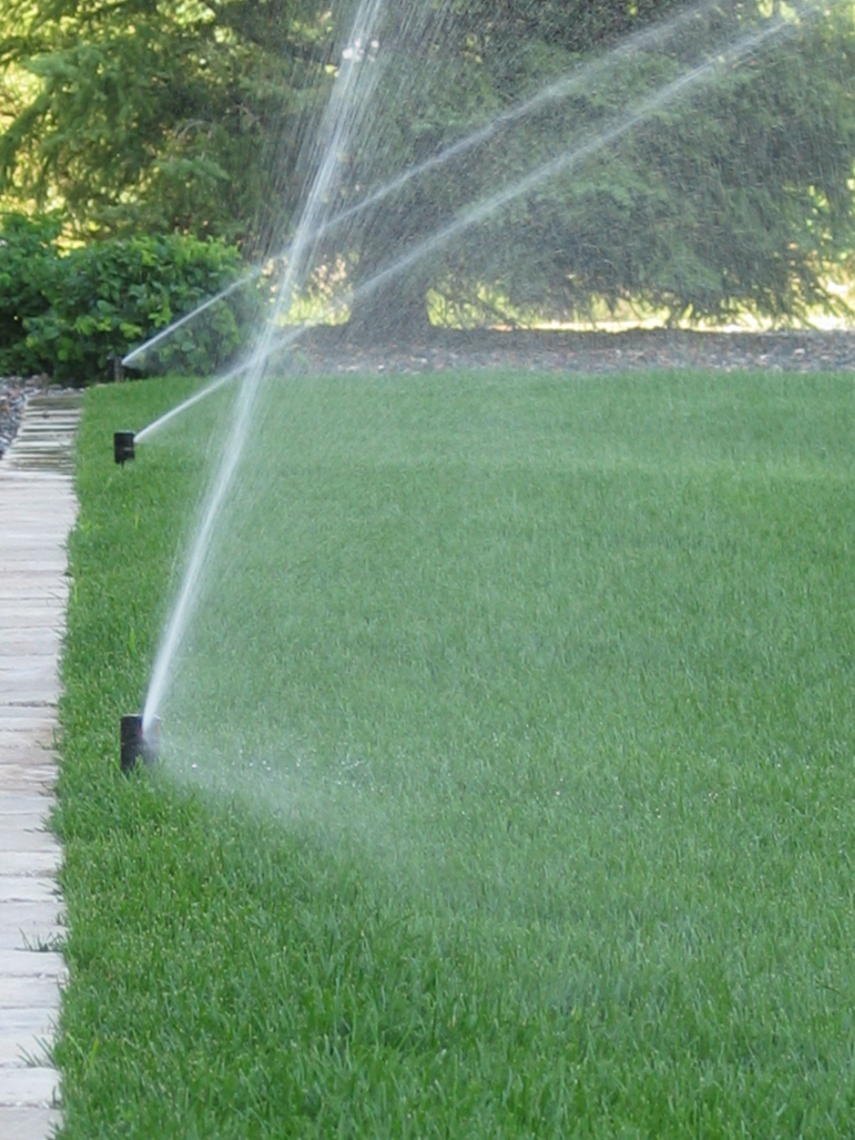 diy vs professional irrigation system repairs outdoor